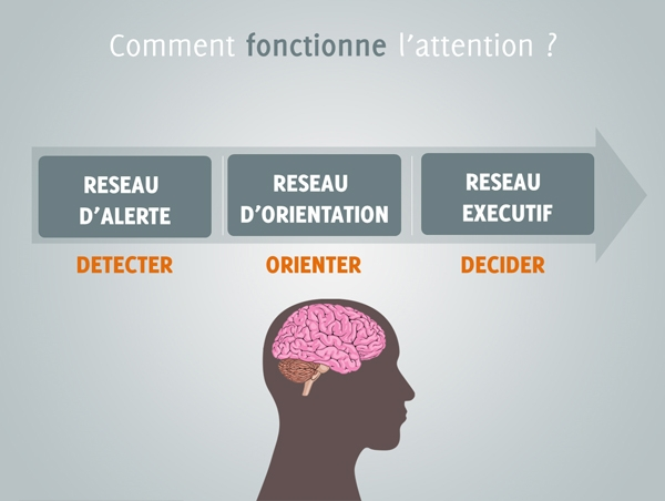 fonctionnement-attention